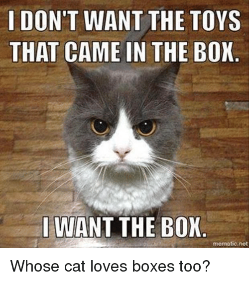 i dont want the toys that came in the box 5310910 i don't want the toys that came in the box want the box mematic