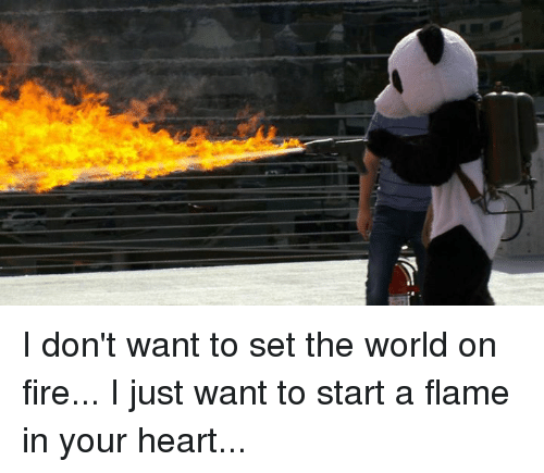 i dont want to set the world on fire i 4485680 ✅ 25 best memes about dont want to set the world on fire dont,Start A Fire Meme