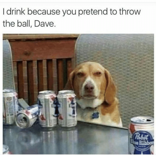 Image result for I drink Dave because you throw the ball
