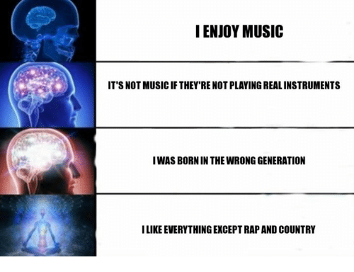 Music, Dank Memes, and Born: I ENJOY MUSIC  IT'S NOT MUSICIF THEY'RE NOT PLAYING REALINSTRUMENTS  IWAS BORN IN THE WRONGGENERATION  ILIKE EVERYTHING EXCEPTRAP AND COUNTRY