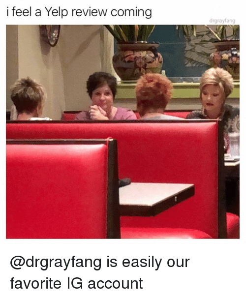 Memes, Yelp, and 🤖: i feel a Yelp review coming  drgrayfang @drgrayfang is easily our favorite IG account