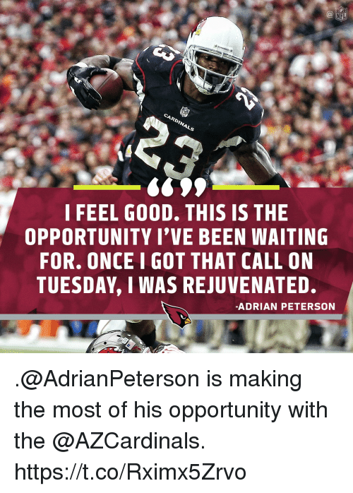 Adrian Peterson, Memes, and Opportunity: I FEEL G0OD, THIS IS THE  OPPORTUNITY I'VE BEEN WAITING  FOR. ONCE I GOT THAT CALL ON  TUESDAY, I WAS REJUVENATED.  -ADRIAN PETERSON .@AdrianPeterson is making the most of his opportunity with the @AZCardinals. https://t.co/Rximx5Zrvo