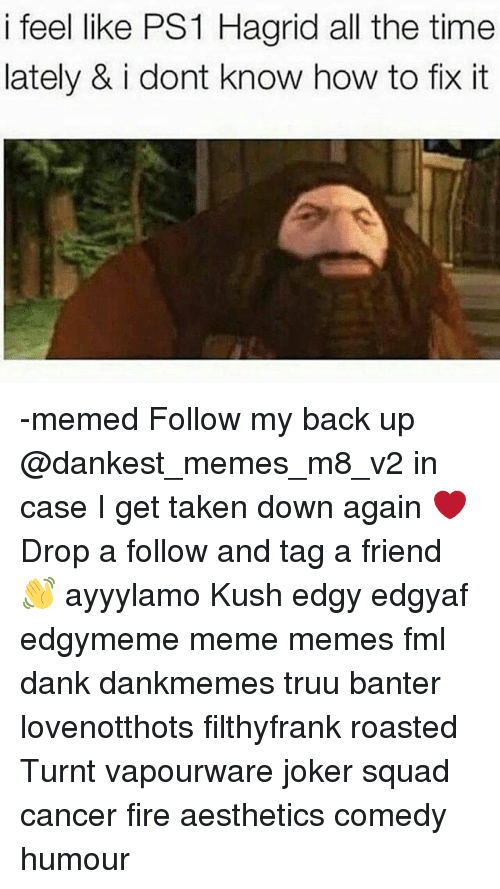 Dank, Fire, and Fml: i feel like PS1 Hagrid all the time  lately & i dont know how to fix it -memed Follow my back up @dankest_memes_m8_v2 in case I get taken down again ❤ Drop a follow and tag a friend 👋 ayyylamo Kush edgy edgyaf edgymeme meme memes fml dank dankmemes truu banter lovenotthots filthyfrank roasted Turnt vapourware joker squad cancer fire aesthetics comedy humour