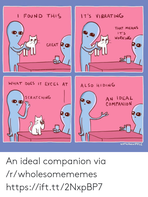 Excel, What Does, and Via: I FOUN D THIS  IT'S VIBRATING  THAT MEANS  IT'S  9WoRK ING  冫了  GREAT  WHAT DOES IT EXCEL AT ALSo HIDING  AN IDEAL  COMPANION  SCRATCHING  NATHANW PYLE An ideal companion via /r/wholesomememes https://ift.tt/2NxpBP7