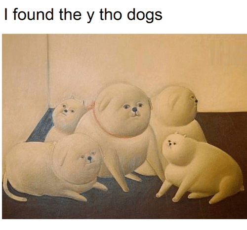 Dogs, Memes, and 🤖: I found the y tho dogs