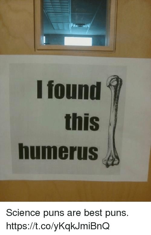 Puns, Best, and Science: I found  this  humerus Science puns are best puns. https://t.co/yKqkJmiBnQ