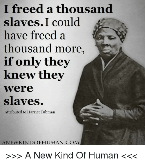 i freed a thousand slaves i could have freed a 7318900 ✅ 25 best memes about harriet tubman harriet tubman memes