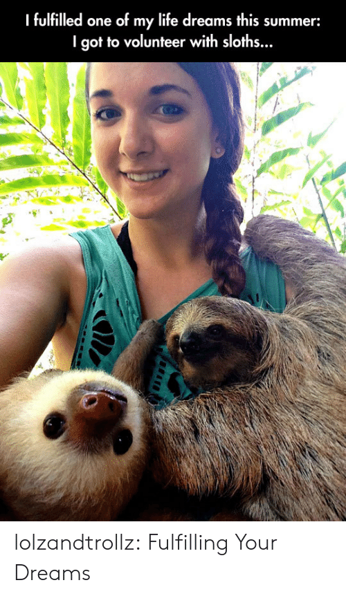 Life, Tumblr, and Summer: I fulfilled one of my life dreams this summer:  I got to volunteer with sloths... lolzandtrollz:  Fulfilling Your Dreams