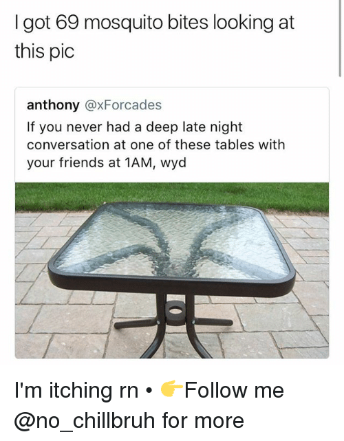 Friends, Funny, and Wyd: I got 69 mosquito bites looking at  this pic  anthony @xForcades  If you never had a deep late night  conversation at one of these tables with  your friends at 1AM, wyd I'm itching rn • 👉Follow me @no_chillbruh for more