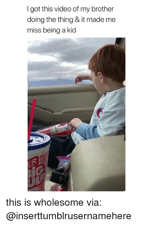 Video, Girl Memes, and Wholesome: I got this video of my brother  do  ing the thing & it made me  miss being a kid this is wholesome via: @inserttumblrusernamehere