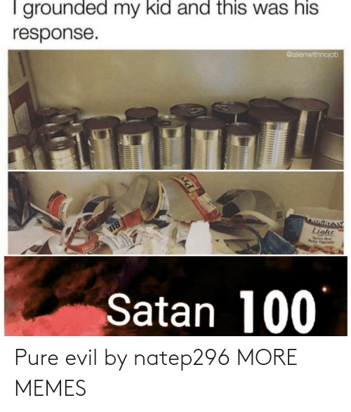 Beef, Dank, and Memes: I grounded my kid and this was his  @alienwithnojob  response.  OאוS  Light  Nry Beef  Rarley Vgetahle  BU  Satan 100 Pure evil by natep296 MORE MEMES