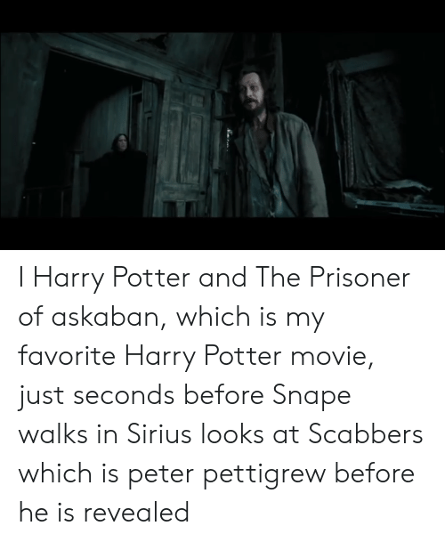 I Harry Potter and the Prisoner of Askaban Which Is My