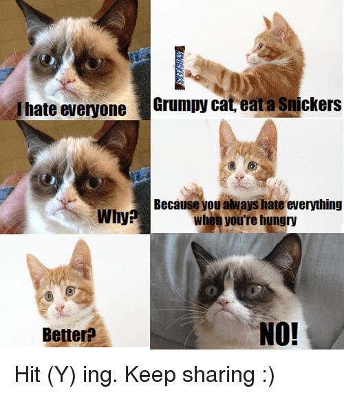 I Hate Everyone Grumpy Cat Eata Snickers Because You Always Hate