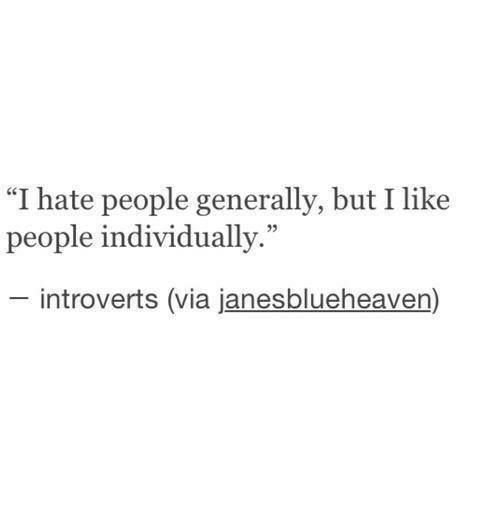 "Via, Hate, and Like: ""I hate people generally, but I like  people individually.""  introverts (via janesblueheaven)"