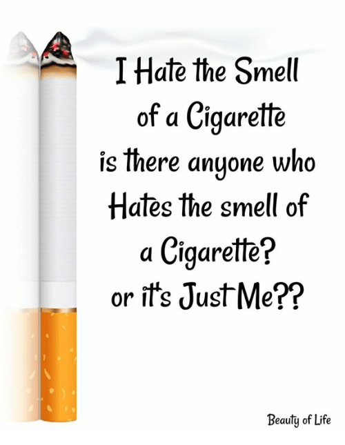 Life, Memes, and Smell: I Hate the Smell  of a Cigarette  is there anuone who  Hates the smell of  a Cigarette?  or ift's JustMe??  Beauty of Life