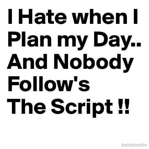 Memes, 🤖, and The Script: I Hate when  Plan my Day..  And Nobody  Follow's  The Script!!  boldomatic