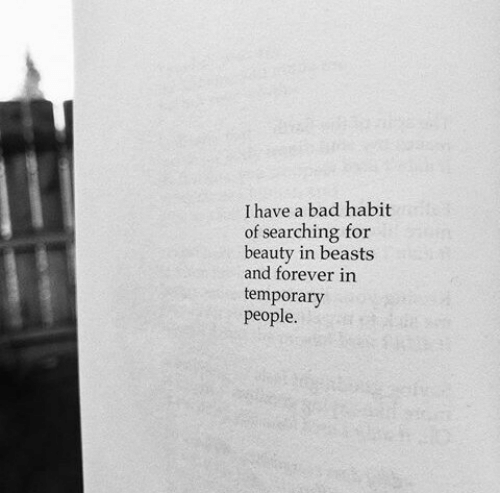 Bad, Forever, and Habit: I have a bad habit  of searching for  beauty in beasts  and forever in  temporary  people.