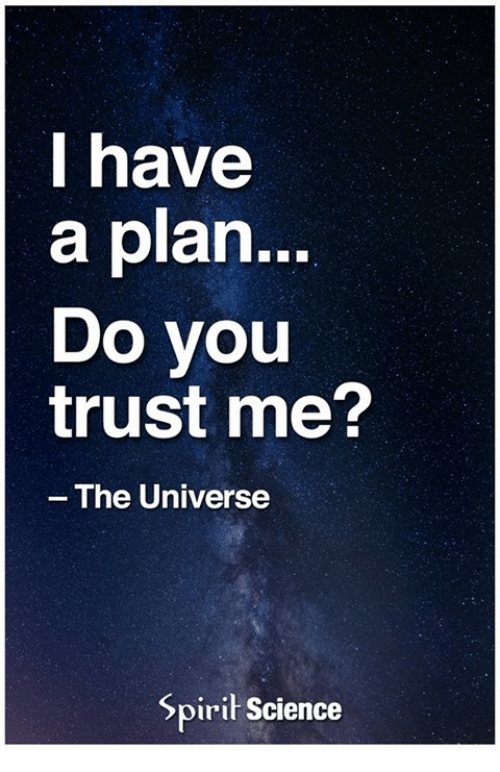 I Have A Plan Do You Trust Me The Universe Spirit Science Meme On
