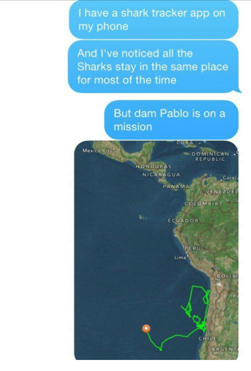 Dank, Shark, and Ecuador: I have a shark tracker app on  my phone  And I've noticed all the  Sharks stay in the same place  for most of the time  But dam Pablo is on a  mission  Mex  DOMINICAN  REPUBLIC  HONDURAS  NICARAGUA  Carac  PANAMA  VENEZUE  LOMBIA  ECUADOR  PERU  Lima  LE  ARGENT