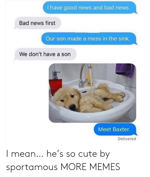 Bad, Cute, and Dank: I have good news and bad news.  Bad news first  Our son made a mess in the sink.  We don't have a son  Meet Baxter.  Delivered I mean… he's so cute by sportamous MORE MEMES