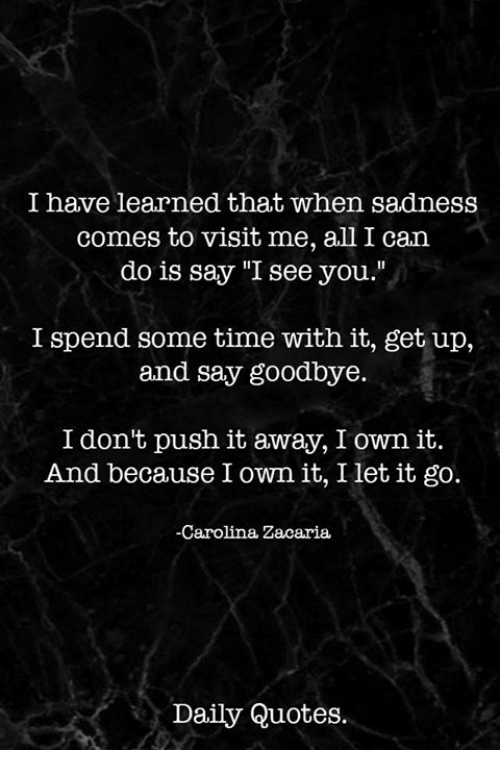 I Have Learned That When Sadness es to Visit Me All I Can