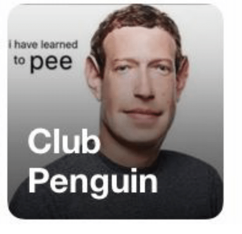 Club, Penguin, and Club Penguin: i have learned  to pee  Club  Penguin