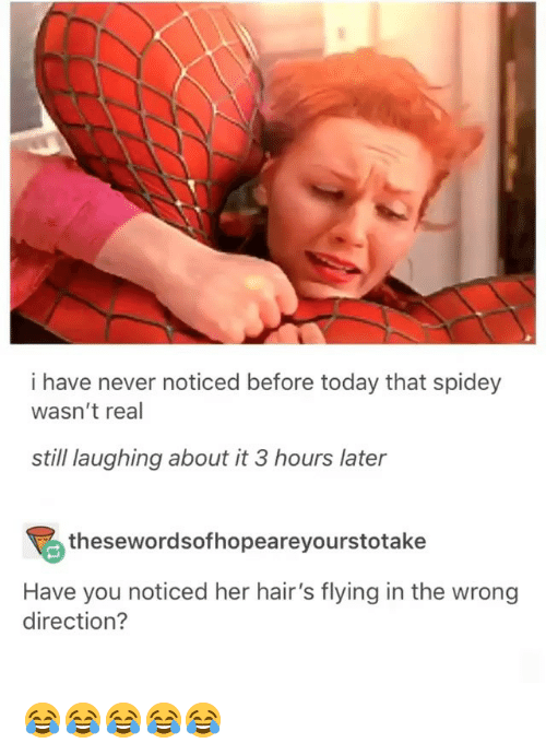 Today, Girl Memes, and Never: i have never noticed before today that spidey  wasn't real  still laughing about it 3 hours later  thesewordsofhopeareyourstotake  Have you noticed her hair's flying in the wrong  direction? 😂😂😂😂😂