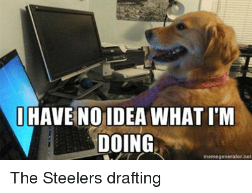 Meme, Memes, and Mike Tomlin: I HAVE NO IDEA WHAT IM  DOING  meme generator net The Steelers drafting