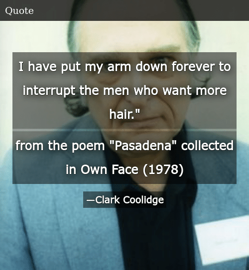 """SIZZLE: I have put my arm down forever to interrupt the men who want more hair."""" from the poem """"Pasadena"""" collected in Own Face (1978)"""