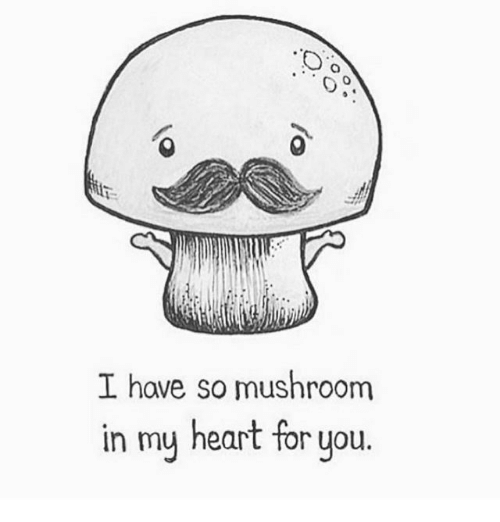 Memes, Heart, and 🤖: I have so mushroom  in my heart for you.