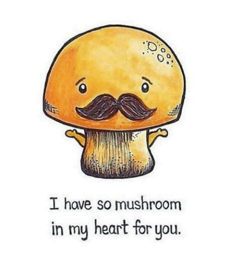 i-have-so-mushroom-in-my-heart-for-you-2