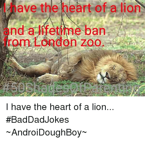 i have the heart of a lion