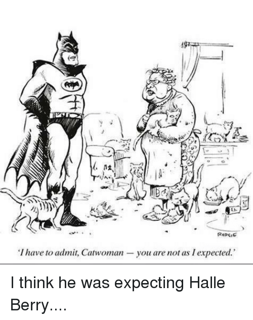 Memes, Halle Berry, and 🤖: I have to admit, Catwoman  you are not as I expected. I think he was expecting Halle Berry....