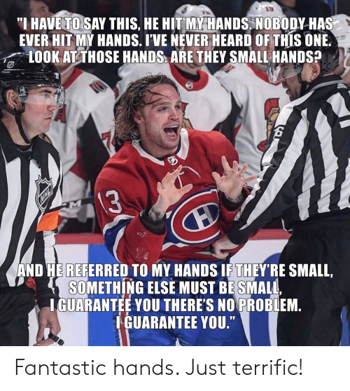 """National Hockey League (NHL), Never, and Something Else: """"I HAVE TO SAY THIS, HE HIT MY HANDS. NOBODY HAS  EVER HIT MY HANDS. I'VE NEVER HEARD OF THIS ONE.  LOOK AT THOSE HANDS ARE THEY SMALL HANDS?  13  AND HE REFERRED TO MY HANDS IF THEY'RE SMALL,  SOMETHING ELSE MUST BE SMALL,  IGUARANTEE YOU THERE'S NO PROBLEM.  IGUARANTEE YOU."""" Fantastic hands. Just terrific!"""
