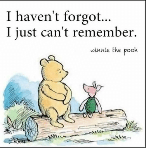 I Haven't Forgot I Just Can't Remember Winnie the Pooh | Winnie the Pooh  Meme on ME.ME
