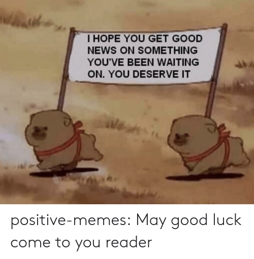 Memes, News, and Tumblr: I HOPE YOU GET GOOD  NEWS ON SOMETHING  YOU'VE BEEN WAITING  ON. YOU DESERVE IT positive-memes: May good luck come to you reader