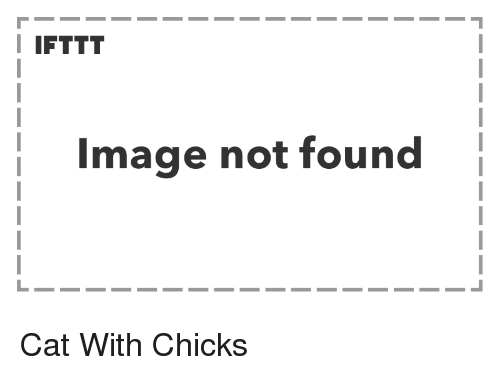 Image, Cat, and Chicks: I IFTTT  Image not found Cat With Chicks