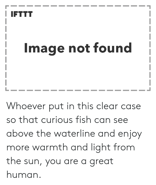 Fish, Image, and Sun: I IFTTT  Image not found Whoever put in this clear case so that curious fish can see above the waterline and enjoy more warmth and light from the sun, you are a great human.
