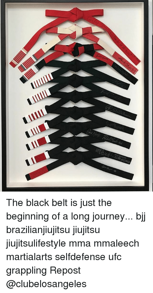 I Ill the Black Belt Is Just the Beginning of a Long Journey