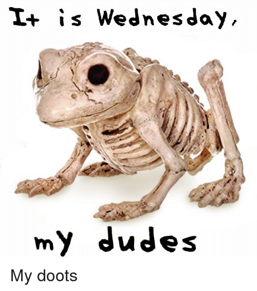 Wednesday, Dank Memes, and My-Dudes: I+ is Wednesday  my dudes My doots
