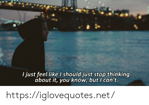 Net, You, and Href: I just feel like I should just stop thinking  about it,you know, but I'can't.  0-0-d- https://iglovequotes.net/