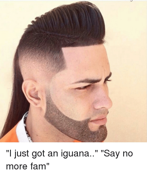 """Fam, Say No More, and Just Fuck My Shit Up: """"I just got an iguana.."""" """"Say no more fam"""""""