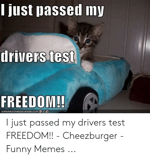 I Just Passed My Drivers Test Freedom Icanhascheezeurgercom I