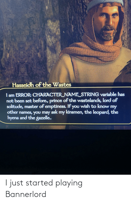 Just, I Just, and Playing: I just started playing Bannerlord