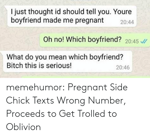 Bitch, Pregnant, and Side Chick: I just thought id should tell you. Youre  boyfriend made me pregnant 20:44  Oh no! Which boyfriend? 20:45  What do you mean which boyfriend?  Bitch this is serious!  20:46 memehumor:  Pregnant Side Chick Texts Wrong Number, Proceeds to Get Trolled to Oblivion