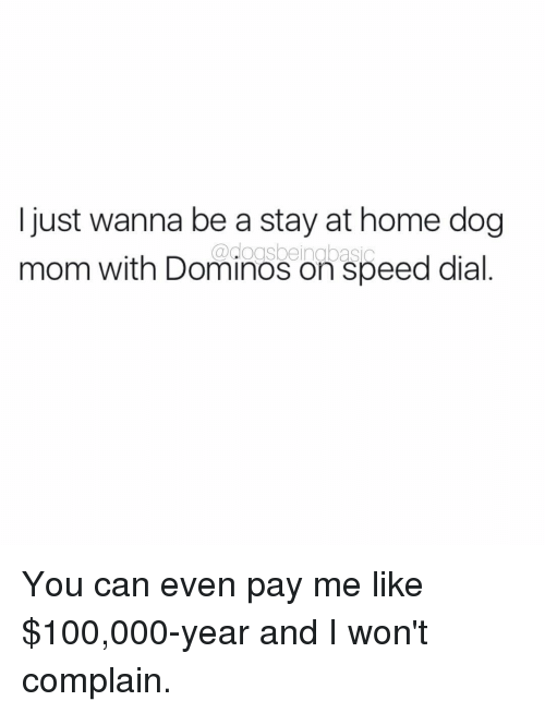 Memes, Domino's, and Dominoes: I just wanna be a stay at home dog  ogsbeingbasic  mom with Dominos on speed dial You can even pay me like $100,000-year and I won't complain.