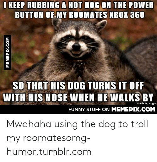 Funny, Omg, and Troll: I KEEP RUBBING A HOT DOG ON THE POWER  BUTTON OF MY ROOMATES XBOX 360  SO THAT HIS DOG TURNS IT OFF  WITH HIS NOSE WHEN HE WALKS BY  made on imgur  FUNNY STUFF ON MEMEPIX.COM  MEMEPIX.COM Mwahaha using the dog to troll my roomatesomg-humor.tumblr.com