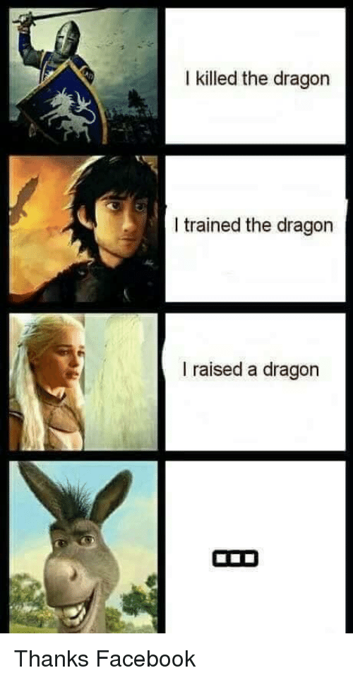 i killed the dragon i trained the dragon i raised a dragon