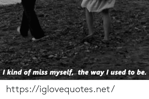 Net, Miss, and Href: I kind of miss myself, the way I used to be. https://iglovequotes.net/