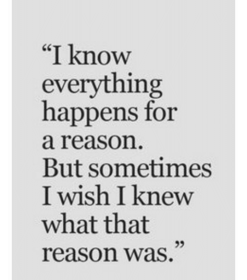 "Reason, What, and For: ""I know  everything  happens for  a reason  But sometimes  I wish I knew  what that  reason was  ce  95"
